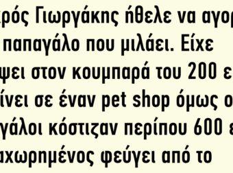 Ο μικρός Γιωργάκης Ήθελε να Αγοράσει Έναν παπαγάλο που Μιλάει